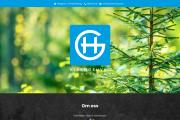 Logotyp & Hemsida - Hjärngruvan Redovisning AB